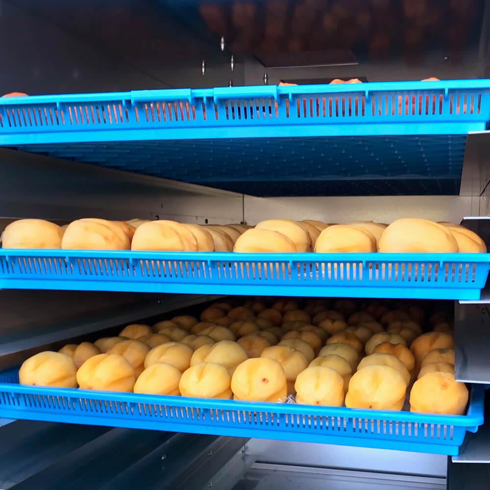 乾燥機に入った柿