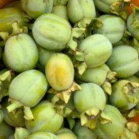 かごの中の渋柿